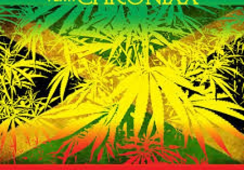 MYSTIC REVEALERS ft CHRONIXX - HERB MUST LEGALIZE NOW